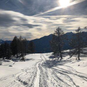 Kilometerlange Langlaufloipe und Schneeweg am Zettersfeld