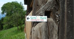 Sensopark in Berg im Drautal erleben